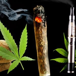Top 4 New Strains to Maintain your weight 2