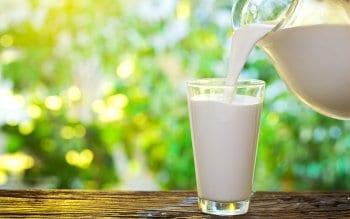 Cbd Milk
