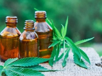 Top 4 New Strains to Maintain Your Weight Using CBD Products