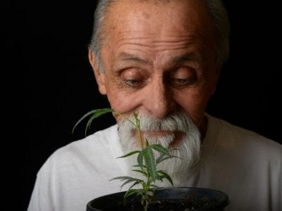 Cannabis For Senior Citizen