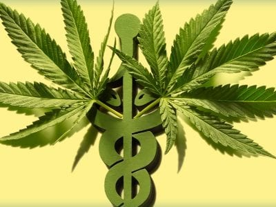 Two Marijuana Leaves Superimposed On A Caduceus Medical Symbol