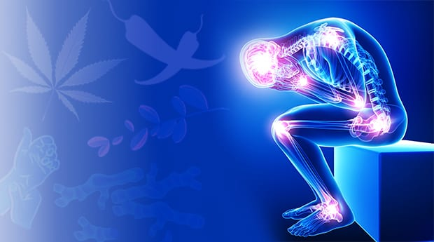 Does Your Body Need Pain Management? CBD Can Help